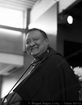 Shamar Rinpoche - Photo Courtesy Tokpa Korlo