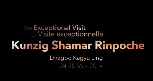 Remembering Shamar Rinpoche