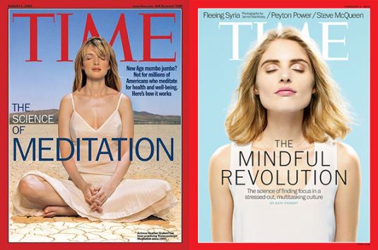 Mindfulness in the Media
